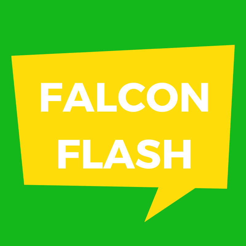 Falcon Flash