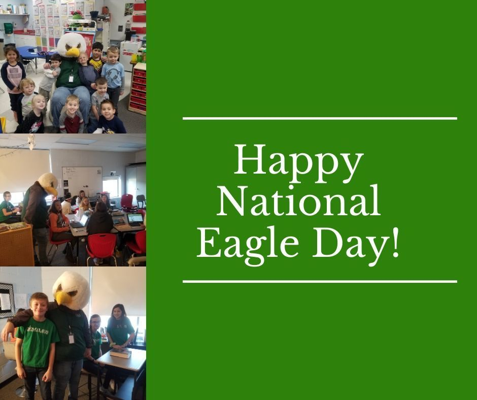Happy National Eagle Day
